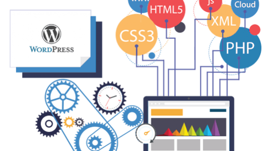 web Development Company in Patna